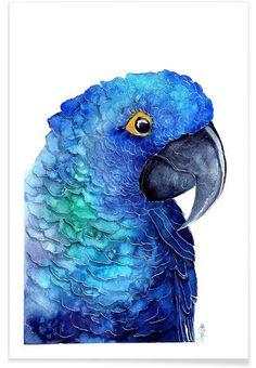 Parrot Ara als Premium Poster von Karolina Kijak   JUNIQE