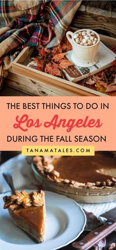 Things to do in Los Angeles during the fall | California | Things to do in Hollywood | Things to do in Santa Monica | Things to do in Beverly Hills | Fall Photogrpahy | Apple Picking | Pumpkin Patch | Corn Maze | Fall Road Trip | Fall Day Trip | Apple Pie | Pumpkin Pie | Sweet Potato Pie | Fall Colors | Fall Foliage | Los Angeles Fall Fashion | Los Angeles Fall Aesthetic | Fall Ideas | Fall Bucket List | Fall Photoshoot | Eastern Sierra Fall Colors | Tractor Rides | Apple Cider | Apple…