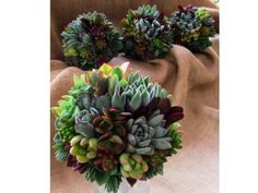 Modern Succulent Wedding Bouquets | Green Bride Guide