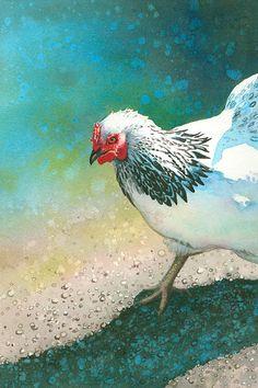 Guy Magallanes - Chicken Scratch