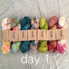 day 1 fade set, 4 different yarn bases available by Lichen and Lace