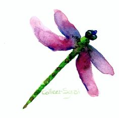 Dragonfly Watercolor Prints   Watercolor Dragonfly   Art & Then Some