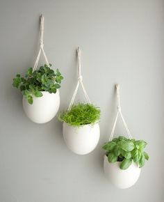 This weekend I'm feeling - Indoor Planting :) set of 3 medium porcelain and cotton rope hanging planters. $135.00, via Etsy.