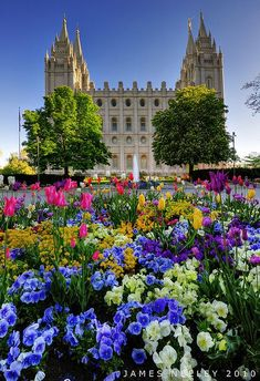 Spring has Sprung - LDS Temple Square in Salt Lake City, Utah Salt Lake Temple, Salt Lake City Utah, Mormon Temples, Lds Temples, Utah Temples, Wyoming, Monuments, Beautiful World, Beautiful Places