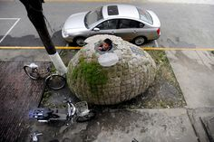 Dai Haifei, 24, from China's Hunan province, looks out from his egg-shaped mobile house where he has been living for the last two months, located near his office in Beijing on December 1, 2010. The house cost about 1,000 USD to build, and is made of bamboo strips and mattress, covered by a layer of heat preservation and water-proof material, with patches of bags stuffed with processed wood peels and grass seeds that could grow grass when spring comes, covering the house like a quilt.