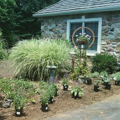 Beginning of a Perenial Garden by youbuyweplant.com   Call or visit youbuyweplant.com to schedule your plantings! 610-500-1210