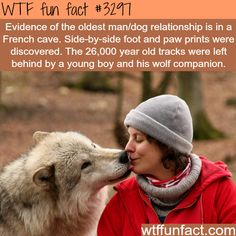 The oldest relationship with dogs -WTF fun facts