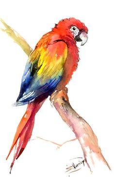 Scarlet Macaw, Original watercolor painting bright tropical bird art, 22 in x Watercolor Bird, Watercolor Animals, Watercolor Paintings, Watercolor Artists, Oil Paintings, Bird Drawings, Animal Drawings, Bird Art, Painting & Drawing