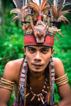 Indonesia - Borneo - Kayan Dayak People -  Headhunter - Headhunting was undoubtedly an important part of Dayak culture more widely. A tradition of retaliation for old headhunts kept the ritual alive until it was curtailed and then gradually stamped out by outside interference – namely, the reign of the Brooke Rajahs in Sarawak and the Dutch in Kalimantan Borneo – in the 100 years leading up to World War II…