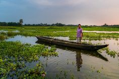 The Disappearing Island: Majuli Island In Assam - Lost With Purpose Brahmaputra River, Ancient Greek Architecture, Gothic Architecture, Northeast India, States Of India, Cultural Capital, Responsible Travel, Grand Mosque, Photo Essay