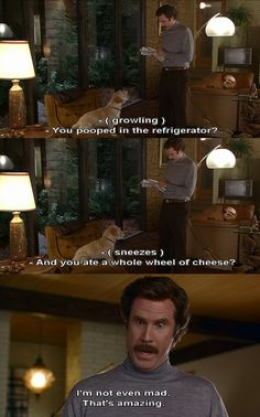 Anchorman: Legend of Ron Burgandy - pooped in the fridge. The first time I saw this was around 1 am with a friend and I laughed for 5 minutes straight.