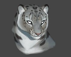 Snow Leopard by Fulemy