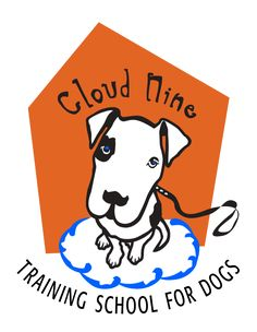 Fun Activities To Do With Your Dog At Cloud Nine