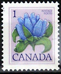 Canada. BOTTLE GENTIAN.  Scott 705 A355, Issued 1977, 1c,  Lithogravure & Engraved, Perf. 12 x 12 1/2.