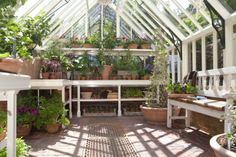 In peak growing season, you can never have too much greenhouse benching.