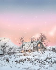 So sweeties its almost Christmas 🌬️💕🎄 Spent a whole year running and in a haste, time for some fairytales and cotton candylike dreams 💕🌬️🤗… Lapland Finland, Fairy Tales, Dreams, Running, Christmas, Cotton, Outdoor, Instagram, Xmas