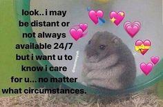 love memes for him . love memes for him relationships Memes Amor, Dankest Memes, Funny Memes, Dog Memes, Cute Love Memes, Cute Quotes, Memes About Love, Love You Memes, Pretty Meme