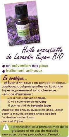 Huile essentielle de Lavandin super : prévention et traitement des poux.