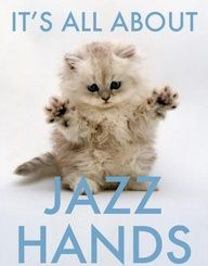 jazz hands, fluffy show choir kitten