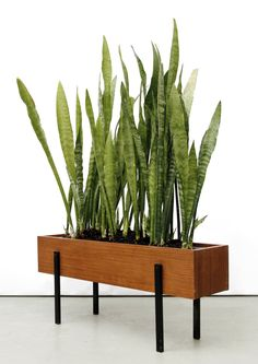 Teak and Enameled Metal Planter | c1960