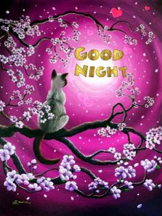 Good Night sister and all,have a peaceful sleep,God bless,xxx❤❤❤✨✨✨