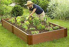 how to start your own backyard vegetable garden