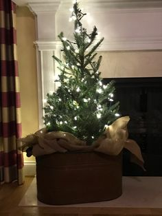 Christmas Things To Do, Little Christmas Trees, Holiday Decor, Projects, Fun, Home Decor, Log Projects, Blue Prints, Decoration Home
