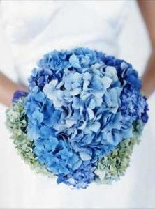 This EXACT picture from theknot.com inspired me to choose blue hydrangea for the main flower in my bridal bouquet. :) How neat that I randomly ran across it so many years later!