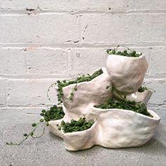 Glazed ceramics with Senecio Rowleyanus aka String of Pearls, 2015 | Zhu Ohmu