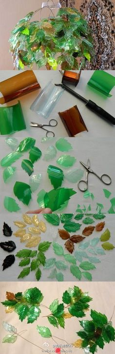 leaves from plastic bottles