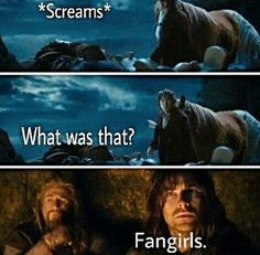 "That would be me you're hearing, Kili. And translated from Fangirlese, it means, ""MARRY ME! I BEG YOU!"""