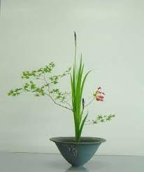 Résultats de recherche d'images pour «ikebana japan»