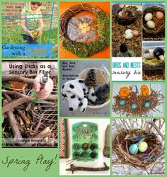The Good Long Road: {Weekly Kid's Co-Op} Birds, Nests and Spring!