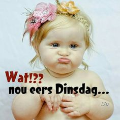 Wat?? nou eers Dinsdag... Good Morning Good Night, Good Morning Quotes, Lekker Dag, Afrikaanse Quotes, Goeie Nag, Goeie More, Day Wishes, True Words, Hilarious