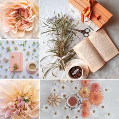 Shades Of Peach, Gift Wrapping, Table Decorations, Gifts, Instagram, Gift Wrapping Paper, Presents, Wrapping Gifts, Favors
