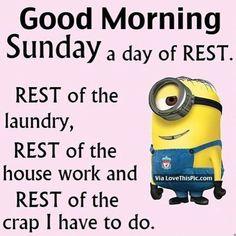 So true minion gif, minions funny minion, minion movie, minion jokes, my Sunday Humor, Sunday Quotes Funny, Morning Quotes, Funny Quotes, Funny Memes, Funny Sunday, Sunday Morning Memes, Weekend Humor, Badass Quotes