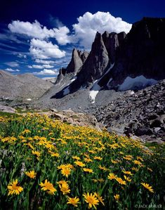 Warbonnet Peak, wildflowers, Cirque of the Towers, Wind River Range, Wyoming Beautiful World, Beautiful Places, Beautiful Pictures, Places To Travel, Places To Go, Mountain Photos, Mountain Landscape, Landscape Design, Nature Photos