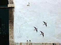 Streetart Lisboa Houses Street Art | EyeEm