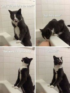 OMG so hilarious/sweet
