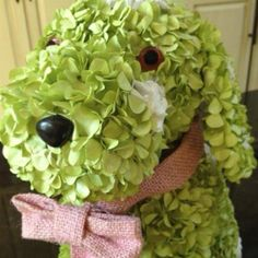 hydrangea dog...what more could you want?