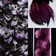Dusky Berries Trend prediction collage Eclectic Trends My colour trends 2015/16 for Global Color Research  | DUSKY BERRY | Part I