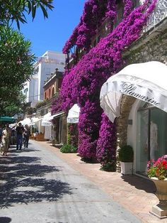 Shopping in Capri, Italy. Bevery Hills and Rodeo Dr are nothing compared to Capri. Amazing