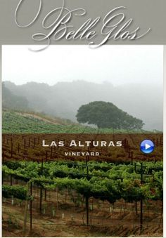 Incredible wine from the Santa Lucia Highlands, Monterey County, California Wine, Trail, The Incredibles, World, The World