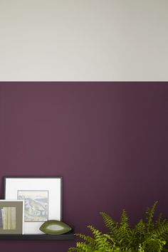 A divide between two colour schemes doesn't have to be between the ceiling and the wall. Addiction purple, sharply contrasted against Grey Putty creates a beautiful two-tone wall.