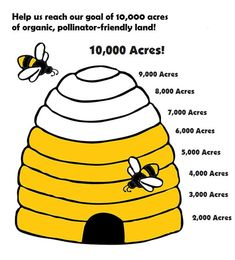 All about Honey Bee-killing agents. Informative materials to educate about brands & soils and plants sold with bee-killing insecticides. The plants take it into its roots & ends up in its pollen! BEE Protective: Pollinators— Beyond Pesticides