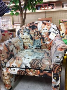 cat sofa, yes please