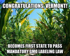 Go Vermont!