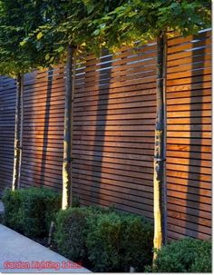 102 Marvelous Modern Front Yard Privacy Fences Ideas - All For Garden