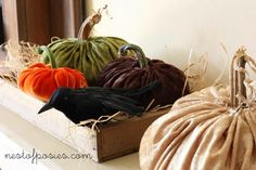 A tutorial and video on how to make plush velvet pumpkins that looks fabulous, rich and elegant for Fall.