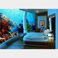 1000 Images About Aquarium Hotels On Pinterest Aquarium